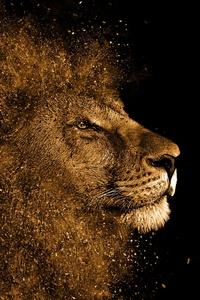 Lion Art 4k