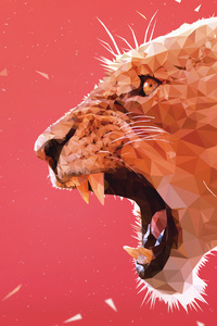 800x1280 Lion Facet 5k