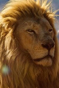2160x3840 Lion King 4k