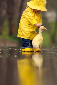 2160x3840 Little Boy Child Playing With Ducks