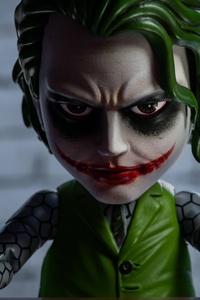 Little Joker 5k