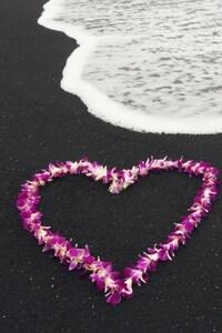 480x854 Love Heart