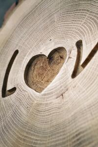 Love Written On Wood