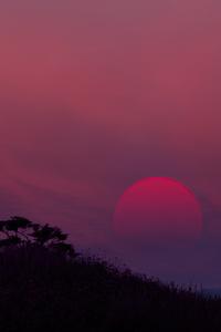 1440x2560 Low Fi Sunset 8k