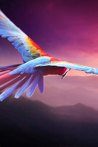 480x854 Macaw Flight Digital Art 4k