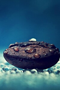 Macro Photography On Coffee Bean