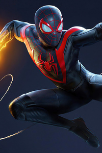 1440x2560 Marvel Spider Man Miles Morales