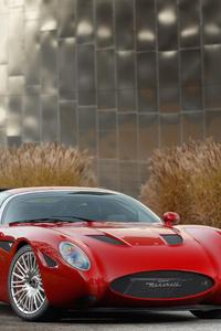 1080x2280 Maserati Zagato Mostro 5k