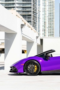 240x400 MC Purple Huracan Carbon EVO
