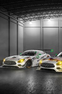 Mercedes AMG GT3 IMSA 2017