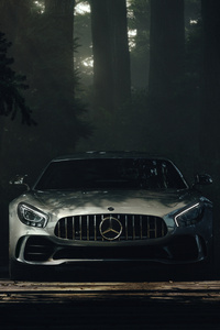 320x568 Mercedes Benz Amg GT Deep Forest