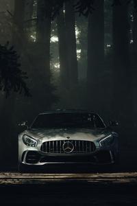 Mercedes Benz Amg GT Forest