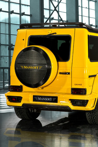 Mercedes Benz Mansory Gronos Rear