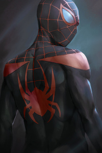 Miles Morales In Spider Man Into The Spider Verse