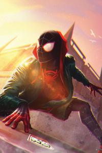 Miles Morales Spider Man Verse