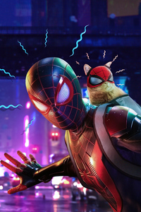 Miles Morales With Cat 4k