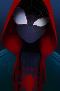 240x400 Miles Spider Man