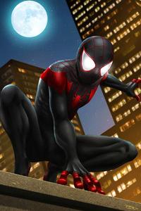360x640 Miles Spider Man Art