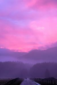 1440x2560 Misty Pink Sunset