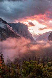 Misty Yosemite