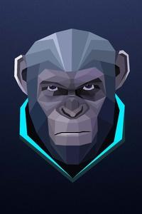Monkey Minimalism 8k