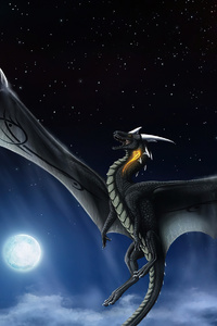 Moon Dragon Night 4k