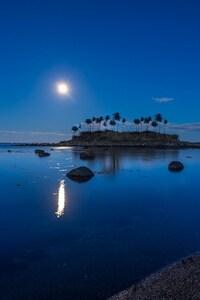 Moonlight Blue