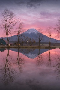 480x854 Mount Fuji Reflection