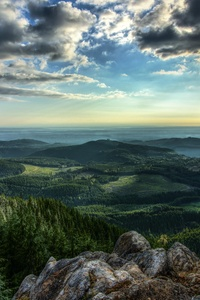 1080x2160 Mount Pilchuck Washington 5k