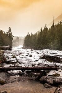 1242x2688 Mountain Conifer Shoreline 5k