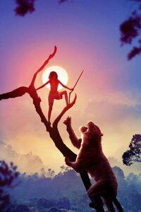 1080x2280 Mowgli Movie 2018 4k