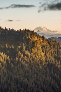 1080x2160 Mt Adams View From The Distance