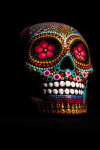 480x854 Multi Color Skull 4k