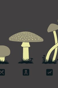 1440x2560 Mushroom Minimalism