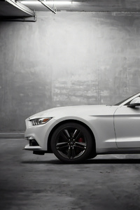 Mustang 4k