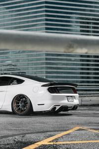 Mustang S 550