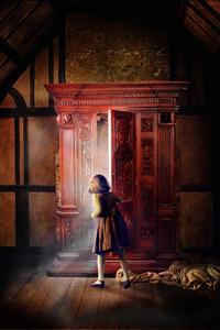 1125x2436 Narnia Door