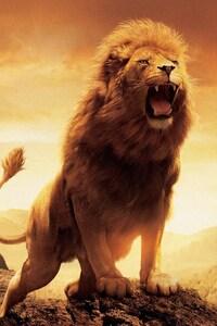 750x1334 Narnia Lion