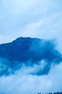 Nature Fog 4k