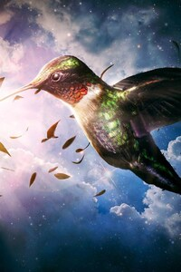 720x1280 Nectar Heaven
