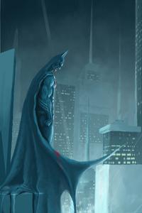 1080x2280 New Batman Artworks