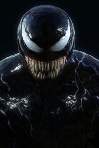New Venom Arts