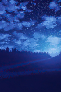 800x1280 Night Road Blue Weather Forest Stars 4k