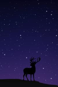Night Sky Deer Minimal 5k