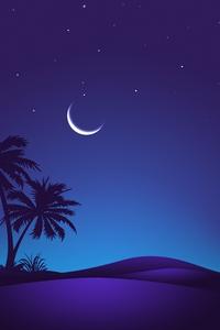 Night Time Desert 4k