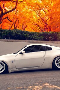 480x800 Nissan 350Z Autumn
