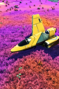 240x320 No Mans Sky Game Plane Colorful Fields 4k