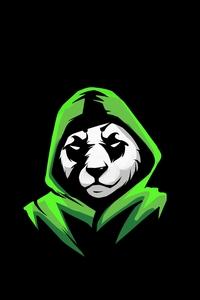 1242x2688 No Worries Panda 5k
