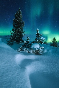 Northern Lights Arctic Circle Norway