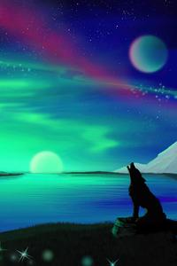 Northern Lights Fox Howling 4k